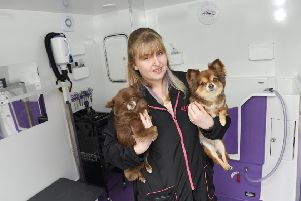 Louise Cameron who has opened a dog grooming salon in her back garden called Pawfectly Pampered.  She is pictured with dogs Chico and Tootsie Pic: Greg Macvean