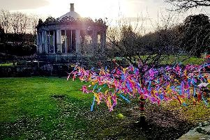 Dalkeith Country Park's Festive Wishing Tree.