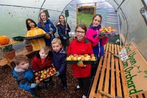 Pupils at Milngavie Nursery and Primary School are celebrating almost two years of growing organic fruit and veg