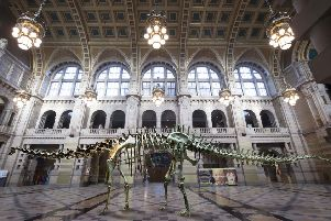 Dippy will be officially unveiled at Kelvingrove Museum on Tuesday, January 22. (Photo:  Alan Harvey / SNS Group)
