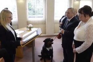 Wearing his mini tuxedo Jack was well-behaved throughout the ceremony as Christopher McCarron and  Margaret Allison were married in Motherwell. Pic: SWNS