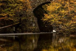 The Hermitage is at its most picturesque in Autumn (Photo: Shutterstock)