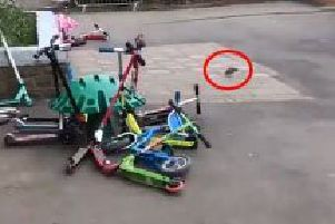A video shows a rat scuttling across the school playground