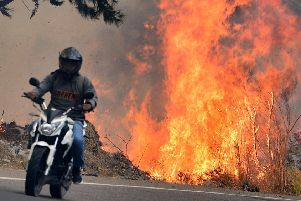 A forest fire rages just six miles from the Honduran capital Tegucigalpa earlier this month (Picture: Orlando Sierra/AFP/Getty)