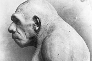A pre-historic man as constructed on the basis of bones found. Picture: General Photographic Agency/Getty Images