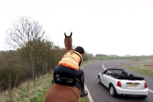 Drivers are urged to slow to 15mph passing horses. Picture: British Horse Society
