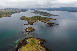 The first Scottish community-led oyster regeneration project at Loch Craignish.