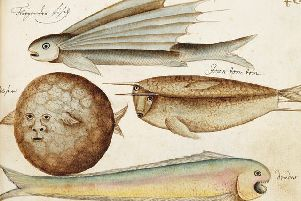 Seafarers' Sketchbooks: historic journals capture drama of life on the ocean wave