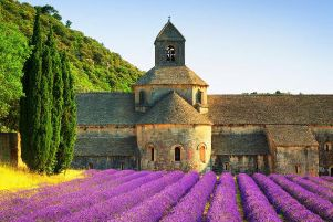 Demand for products made from lavender, such as that seen in this field in France, is increasing.