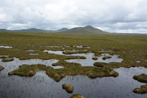 The Flow Country in Caithness and Sutherland is around 1,500 square miles of 10m deep peat and boggy pools