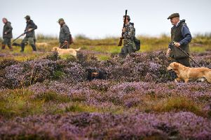 A shooting party sets out on Forneth Moor