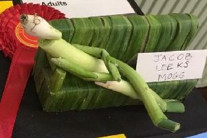 A creative mum-of-three bagged second prize at her town's onion fayre.