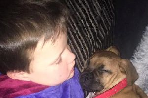 Harris Speirs, aged five, was inseparable from Bull Mastiff pup Casha after 'Santa' gave him the dog for Christmas. Picture: SWNS