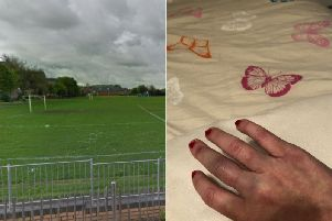 Emily Thompson was left with a bruised and swolen hand after stopping the rogue firework. Pic: Submitted/Google Maps