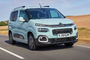 The Berlingo sports Cactus stylings