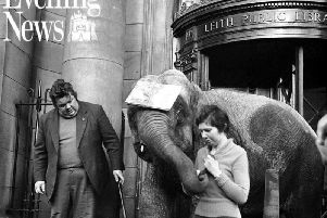 Indras the elephant at Leith Library in January 1976. PIC: TSPL.