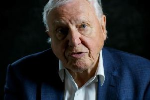 David Attenborough did not hold back. Picture: PA/WWF
