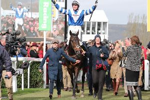Tipped for success: Frodon. Picture: submitted