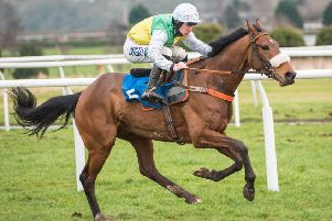 Mount Mews, ridden by Brian Hughes (picture by Alan Raeburn).