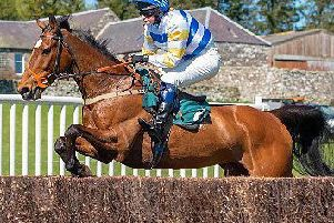 Harriet Bryce on her point-to-point mount Damien's Dilemma.