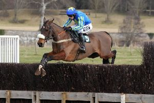 Action from last season's Berwickshire point to point meeting at Kelso (picture by Grace Beresford)
