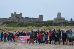 Dog owners assembled at Bamburgh Beach on Sunday to back Georgie and Edward Bell's bid to track down their missing border terriers Ruby and Beetle.